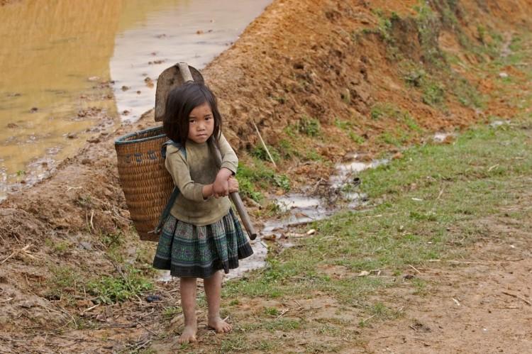 Sa_Pa-Child_labour-Demographics_of_Vietnam-Vietnam-Vietnamese_people